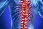 Ребра у человека: анатомия, функции, возможные травмы и типичные болезни, их лечение