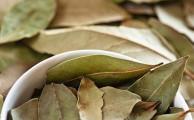 лавровый лист - прекрасное средство в народной медицине