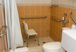 рис. 6: поручни в душе и туалете