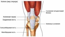 характер боли, которую вызывают патологии коленного сустава, различается в зависимости от заболевания, а также варьируется по интенсивности