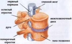 Протрузия шейного отдела симптомы
