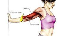 Растяжение мышц: причины, симптомы и методы лечения